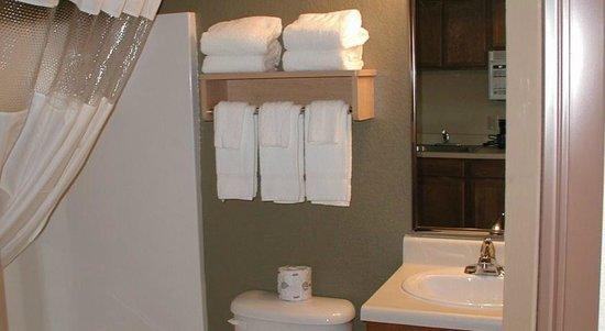 Home-Towne Suites Bentonville: Bathroom