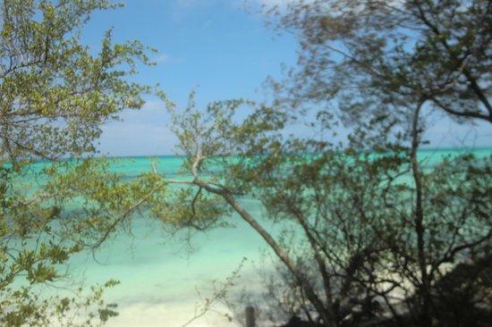 Seasons Lodge Zanzibar: Privater Ausblick