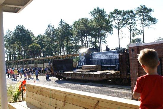 St. Marys Railroad: My nephew enjoying the view