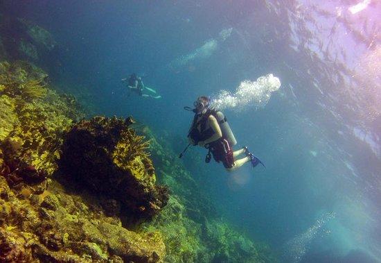 St. Thomas Diving Club: My husband