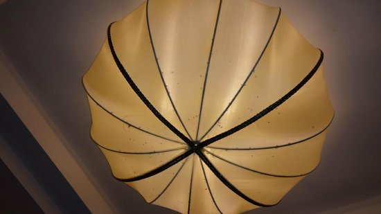 Golden Silk Boutique Hotel: dead insects in the lamp of living room