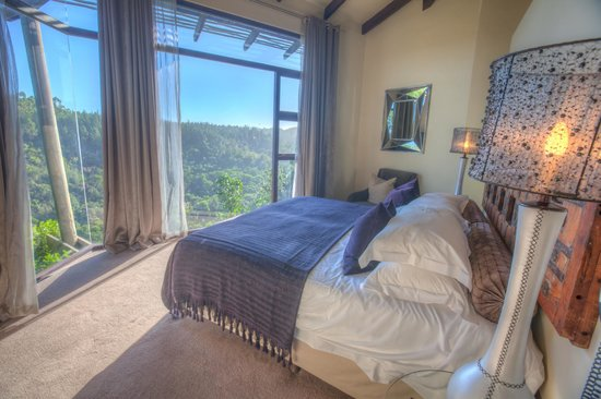 Tsala Treetop Lodge: the view from one of the treetop villas