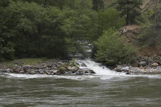 Wapiti River Guides: Lake Creek