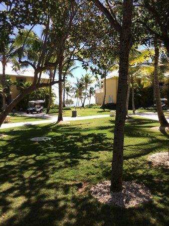 Tortuga Bay Hotel Puntacana Resort & Club: Hotel Gardens