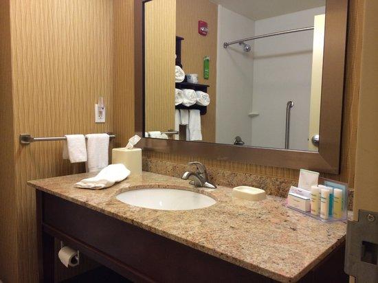 Hampton Inn & Suites Grand Forks : Bathroom