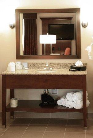 Hampton Inn & Suites Boulder - North: Vanity Area