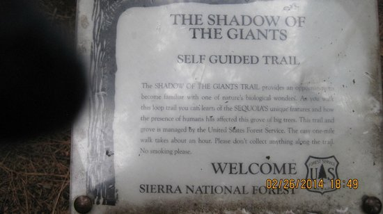 Nelder Grove: The sign as you enter the Grove