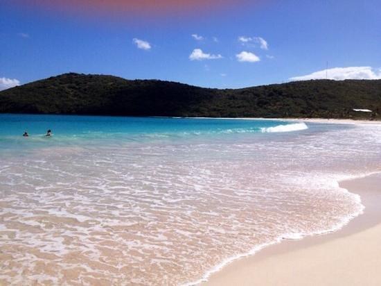 Melia Coco Beach : flamenco beach - Culebra island