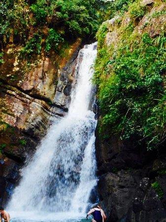 Melia Coco Beach : La Mina falls