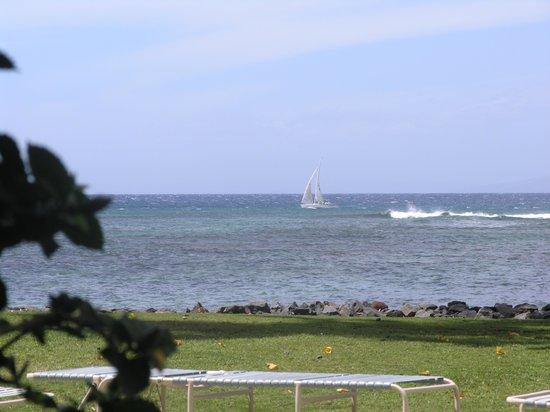 Oceanfront area of Kahana Reef