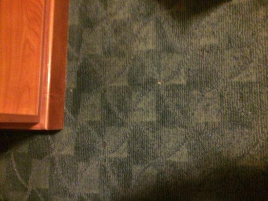 Chinook Winds Casino Resort : Floor