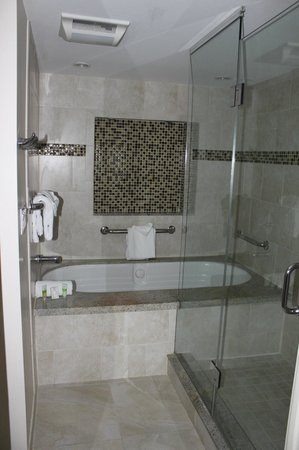 The Galleon Resort And Marina : Whirlpool Tub/Seperate Shower in Two Bed/Two Bath