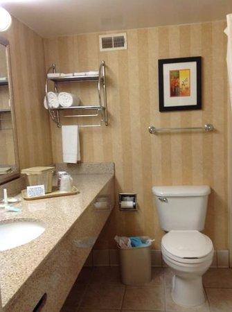 Comfort Inn & Suites Presidential: bathroom