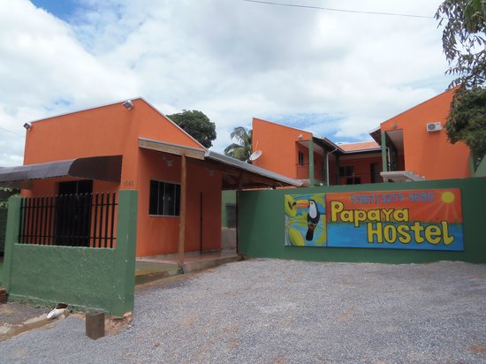 Papaya Hostel