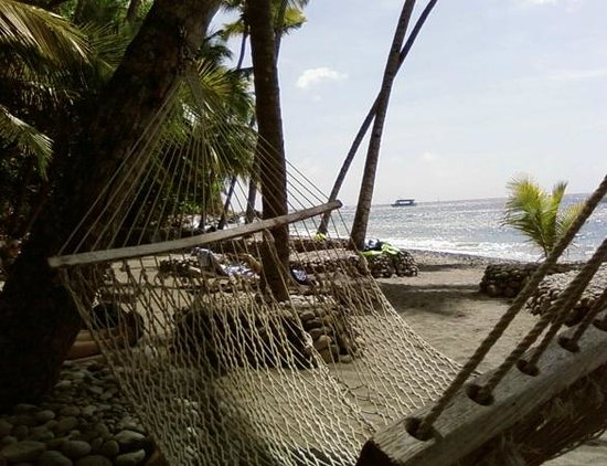 Anse Chastanet : Relaxing on the beach in a hammock