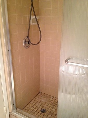 International Hotel & Suites: shower
