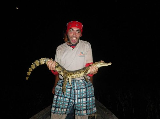 Allpahuayo Mishana National Reserve: by night