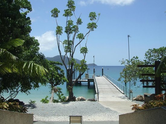 Fitzroy Island Resort: pier