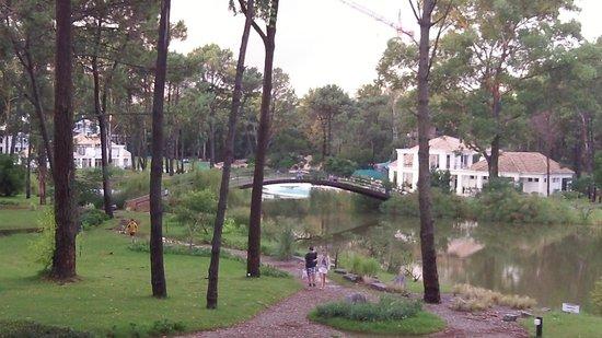 Green Park : Vista al lago