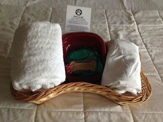 Inn at Seaside: This is the Doggy package you get for your pet!!  AWESOME!!!