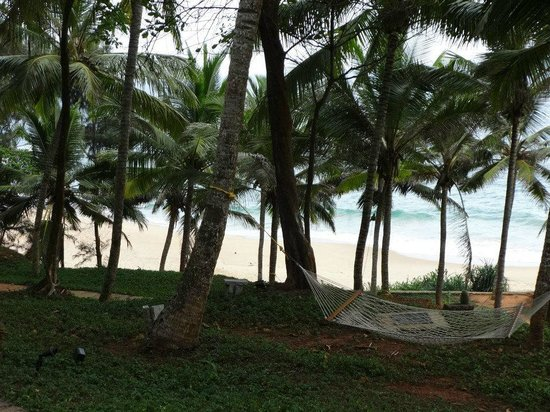 Niraamaya Retreats: private beach