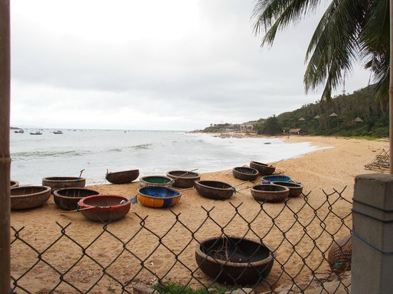 Haven Vietnam: Local Fishing Boats