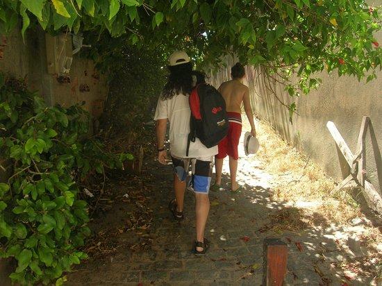 Ferradurinha Beach : Paso desde Geribá (son dos cuadras)