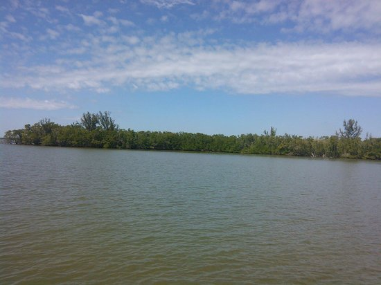 Everglades National Park Boat Tours: View