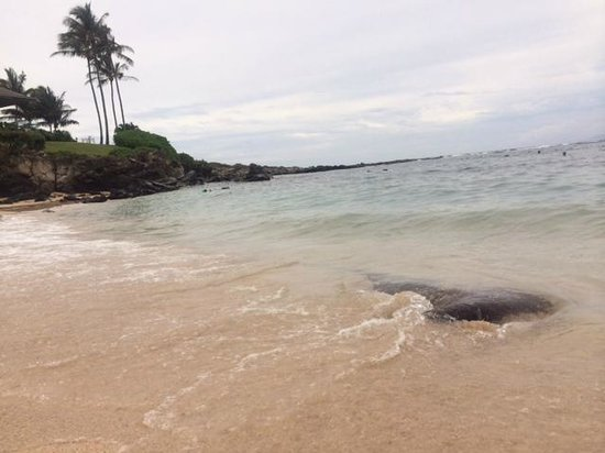 Napili Beach : beautiful bay for swimming and snorkeling