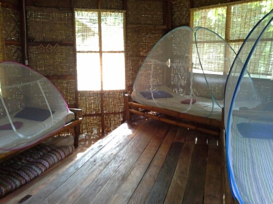 Nuts Huts Resort: Inside the 'boutique dorm' C