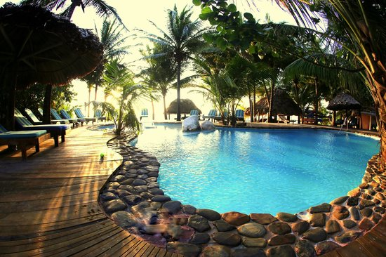 Xanadu Island Resort: Gorgeous pool with ocean view!