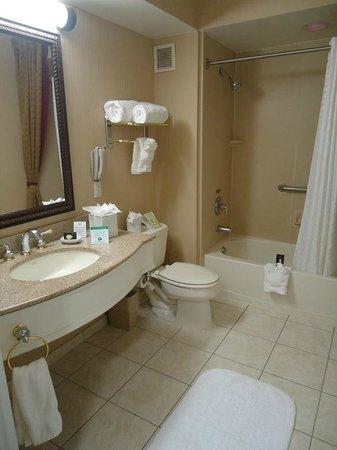 The Wilshire Grand Hotel: Banheiro
