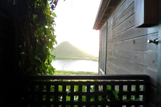 Hermitage Bay : View from the outdoor shower, room 37.