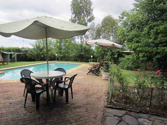 Green Tree Lodge: Pool area with tables
