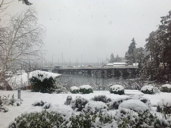 Brentwood Bay Resort & Spa: Morning Snow