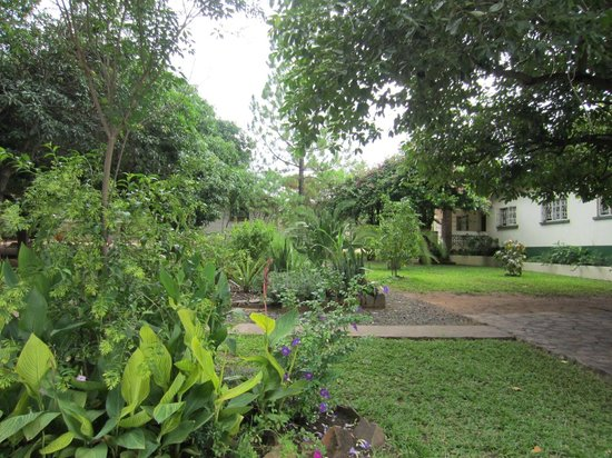 Green Tree Lodge: Garden View