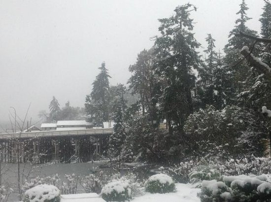 Brentwood Bay Resort & Spa: Winter Wonderland