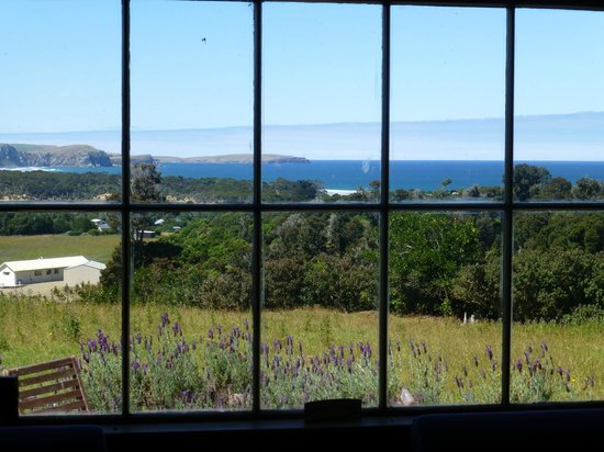 Hilltop Accommodation Catlins : View from the Hilltop lounge room