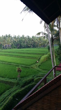Junjungan Ubud Hotel and Spa: View from room