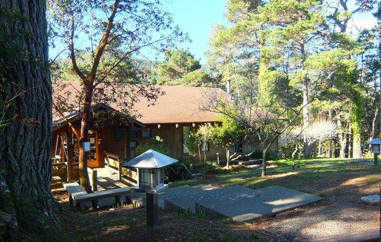 Osprey Peak Bed & Breakfast: Morning sight - Entrance/Front