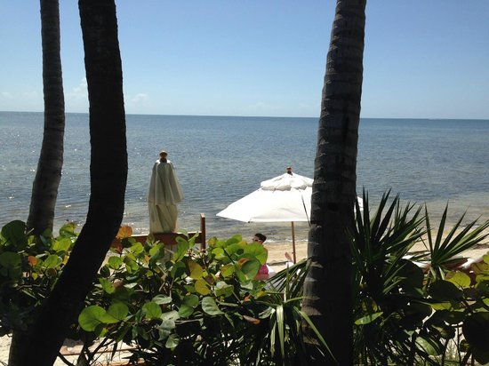 The Dining Room at Little Palm Island: View one direction from our dining table