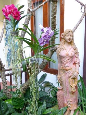 Shewe Wana Suite Resort : More of the Garden