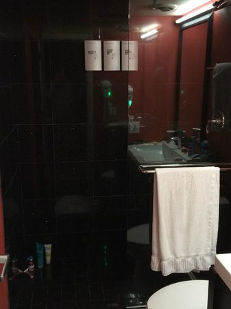The Clarendon Hotel and Spa : Black hole bathroom