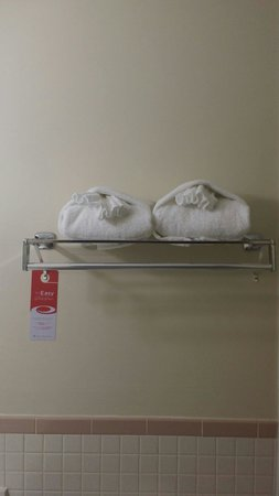 Econo Lodge Inn & Suites Airport: Fluffy great towels