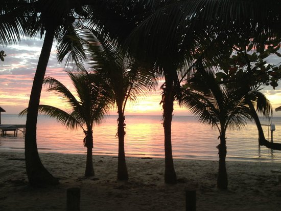 Villa Delfin Roatan : West End Sunset