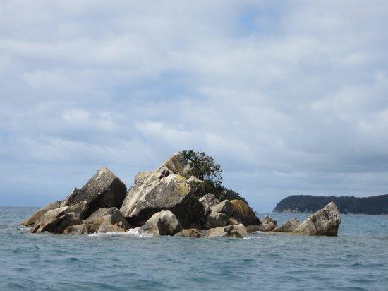 Abel Tasman Eco Tours: Split Apple Rock