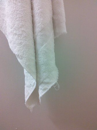 Quality Inn & Conference Center: old towel