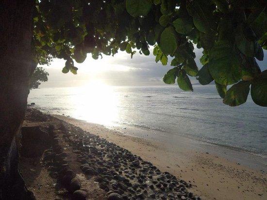 Garden Island Resort: Waiyevo