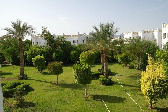 Sonesta Club: Вид в сад из нашего номера