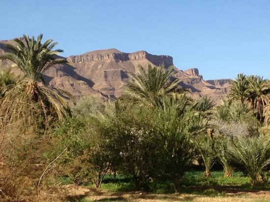 Marrakech Expedition: The oasis and the mountains